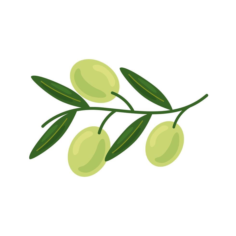 icône de nourriture saine graines de café frais vecteur