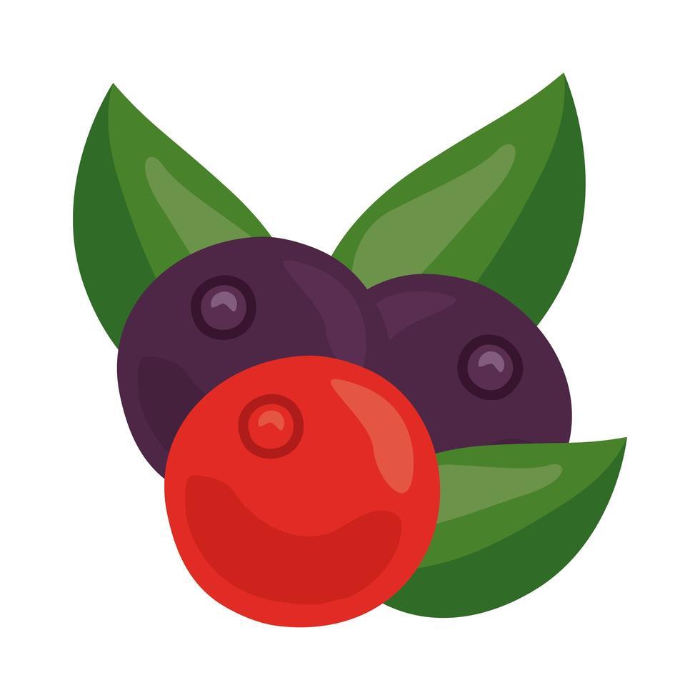 icône de nourriture saine fruits frais cerises vecteur