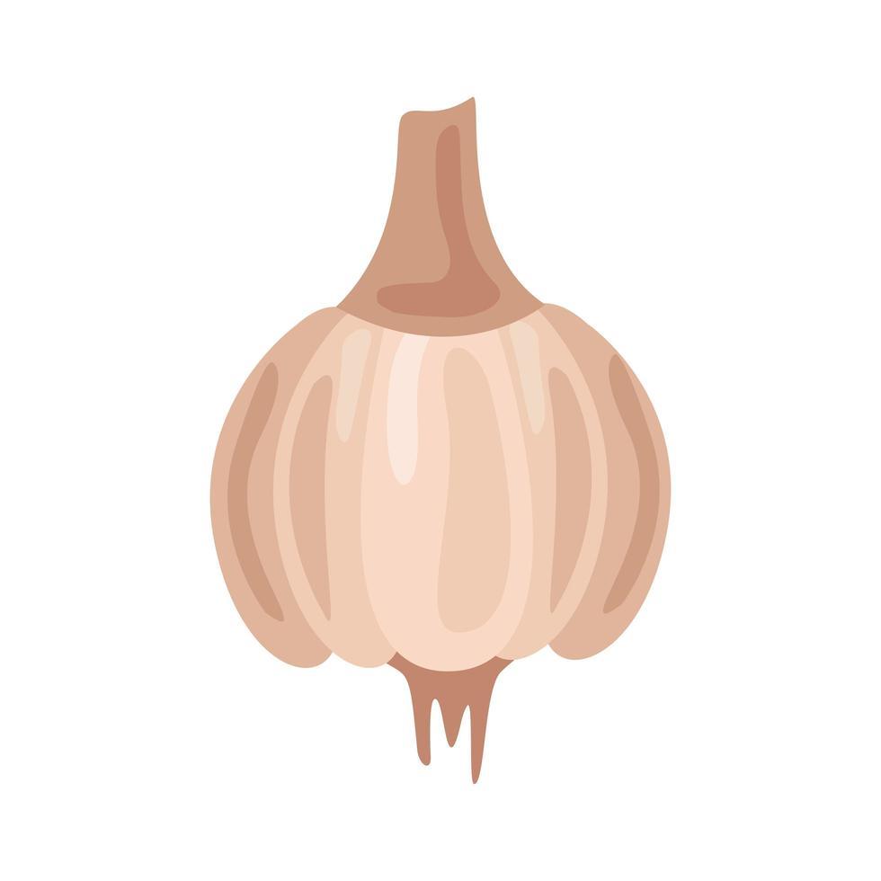 icône de nourriture saine légume ail frais vecteur