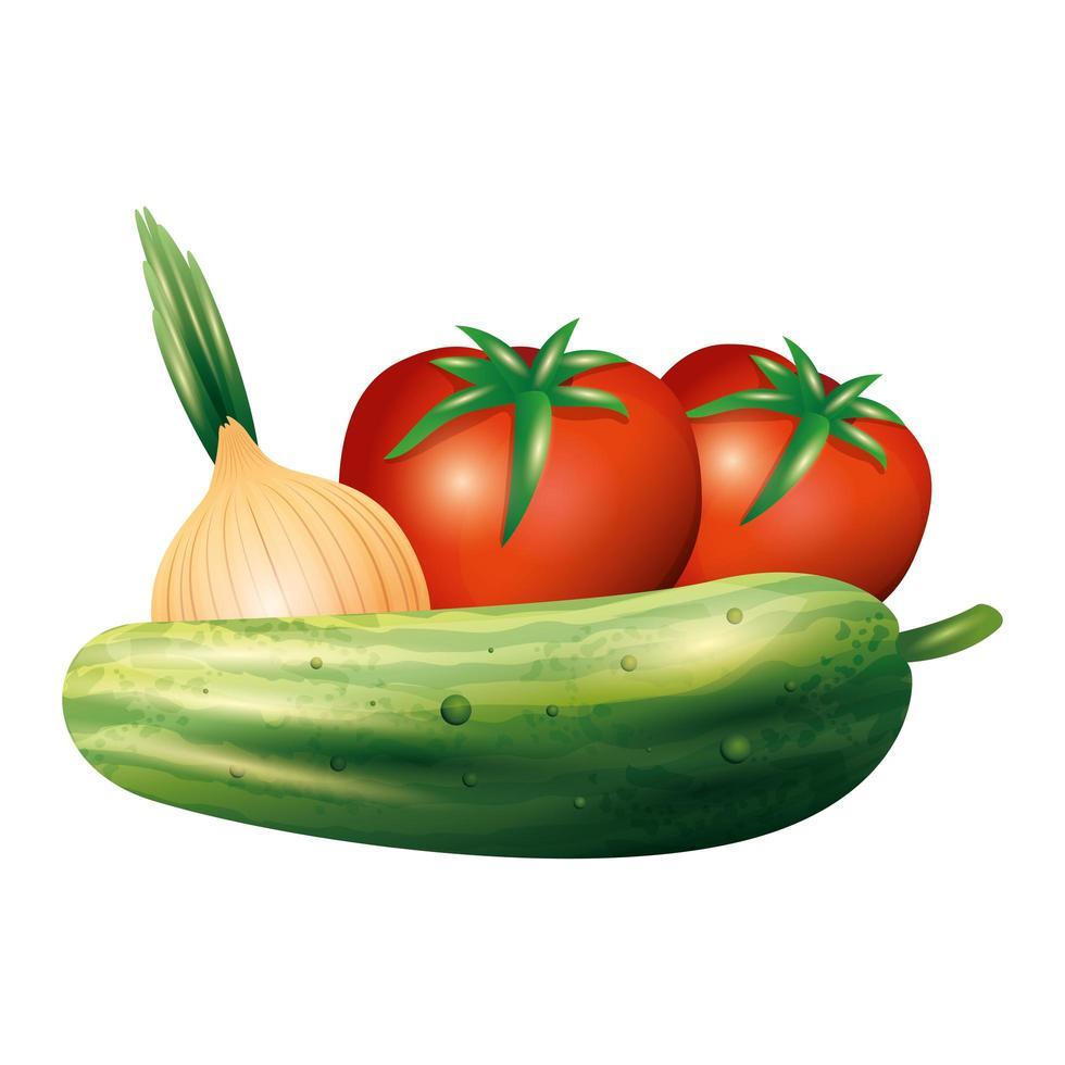 conception de vecteur de légume concombre tomate et oignon