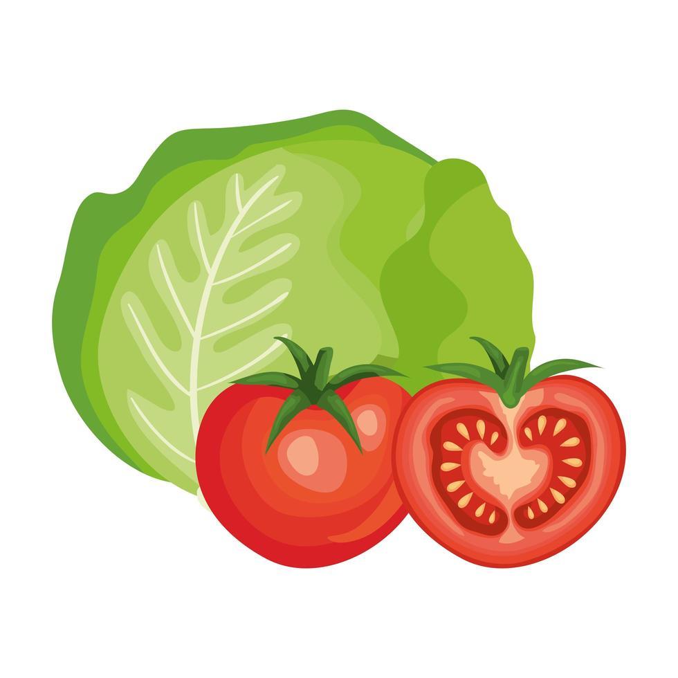 tomates fraîches aux légumes de laitue vecteur