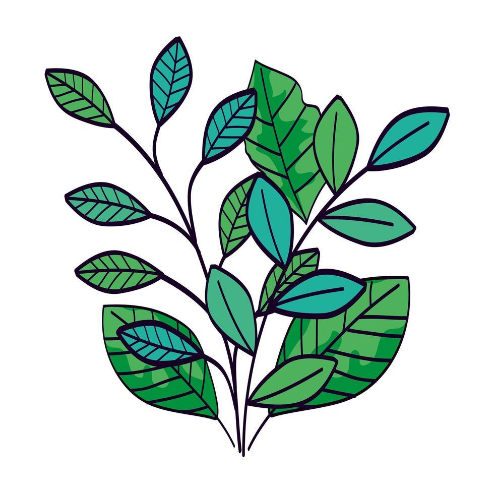 branches avec des feuilles icône isolé naturel vecteur