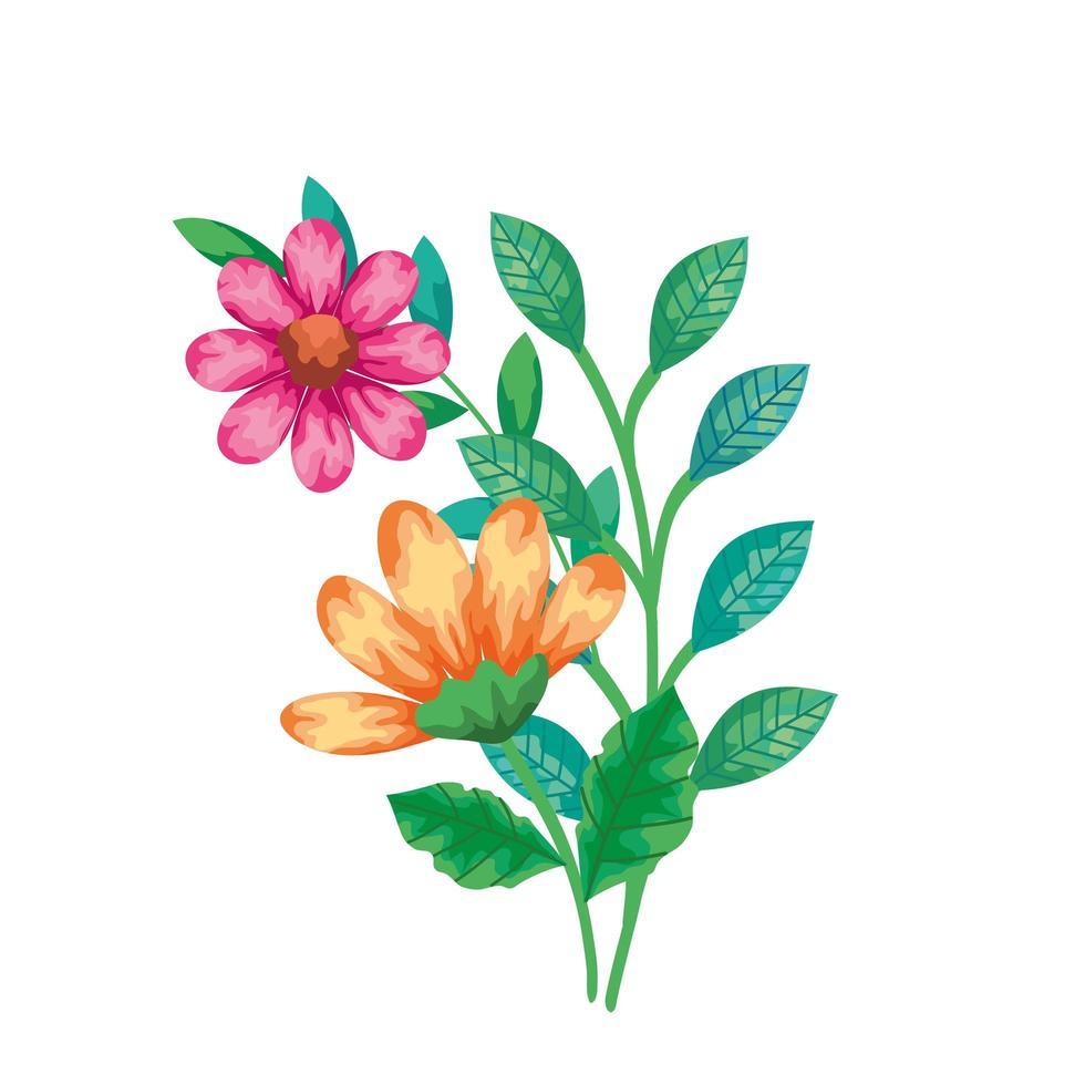 jolies fleurs de couleur jaune et rose avec des feuilles vecteur