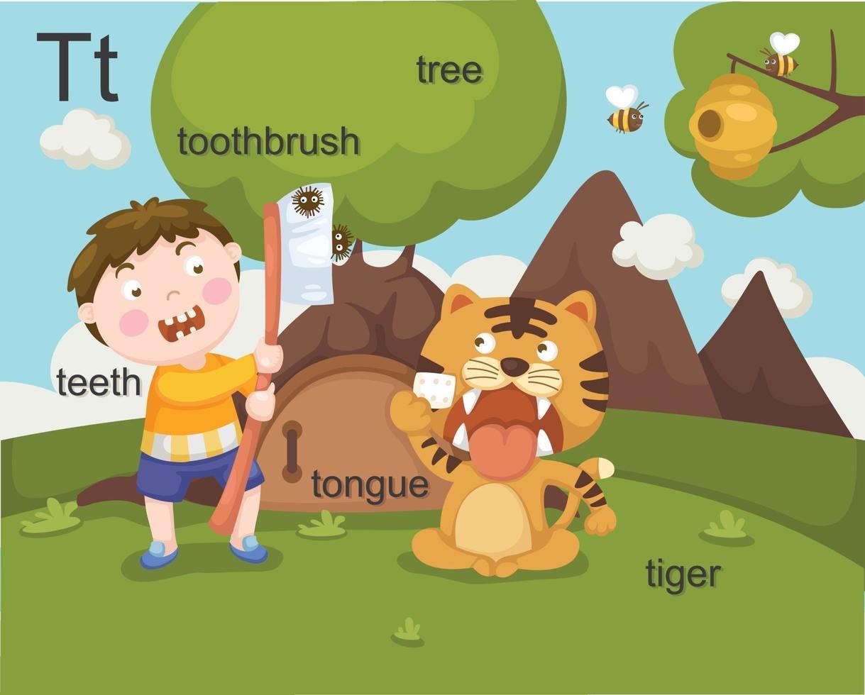alphabet t lettre dents, brosse à dents, arbre, langue, tigre vecteur
