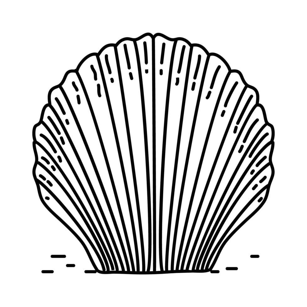 icône tropicale de coquille. style d'icône dessiné à la main ou contour doodle vecteur