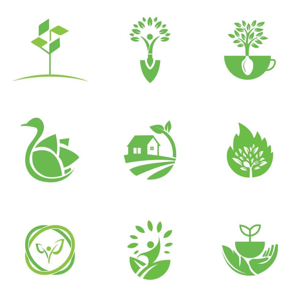 modèle de conception de logo écologique pour les entreprises et les entreprises vecteur