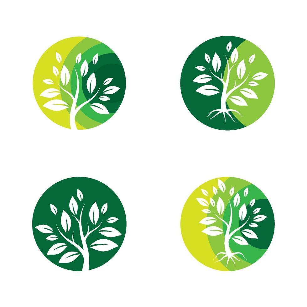 conception d'images de logo d'arbre vecteur