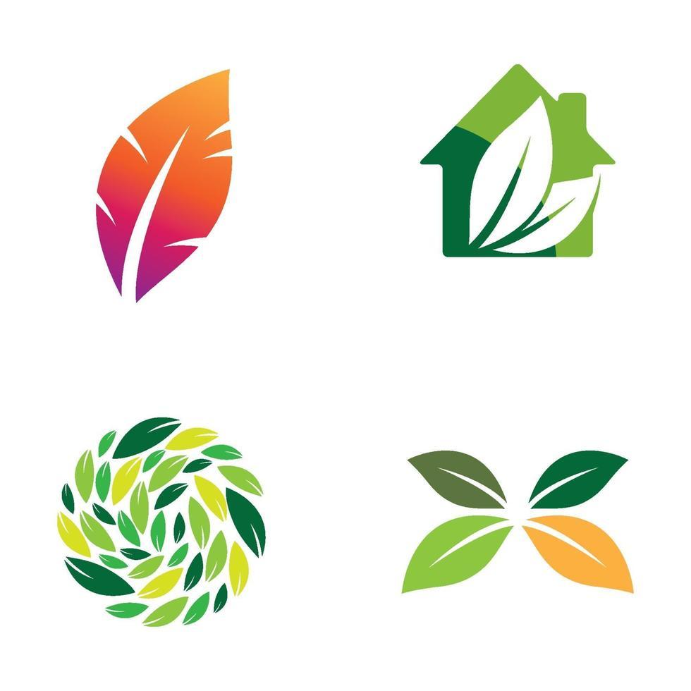 images de logo de feuille vecteur