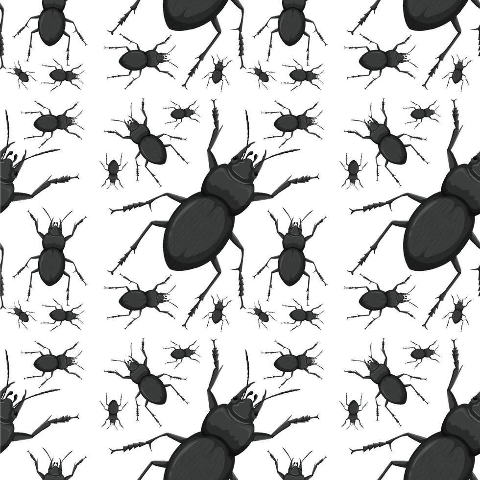 fond transparent insecte coléoptère vecteur
