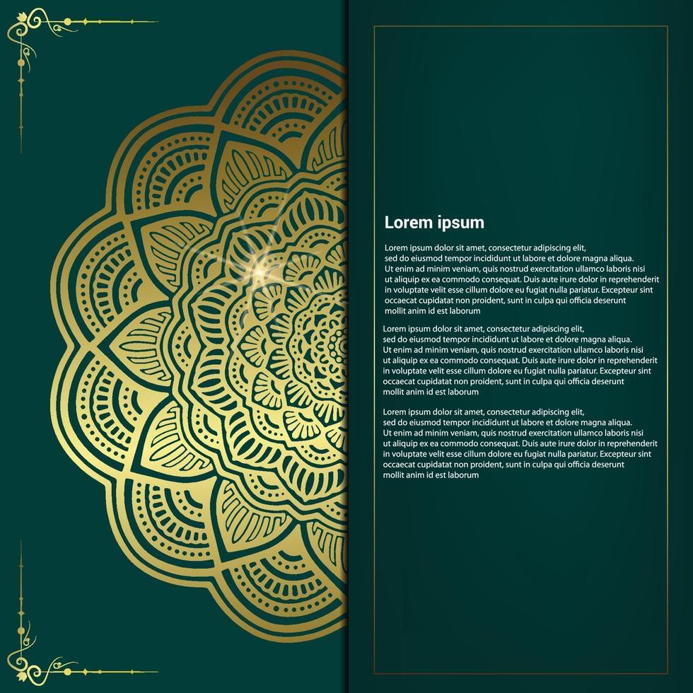 cadre décoratif ornemental floral et mandala fond luxe vecteur