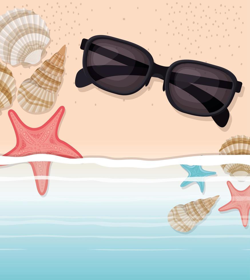 coquille de mer et étoile dans la conception de sable vecteur