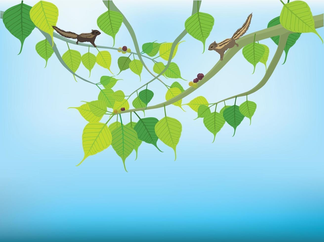 arbre bouddhiste sur vecteur graphique illustration