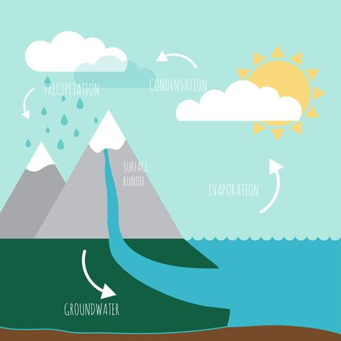 Infographie du cycle de l'eau vecteur