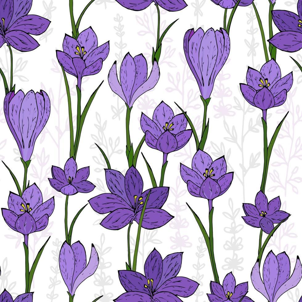 fleurs de printemps sans soudure. crocus colorés sans soudure. vecteur