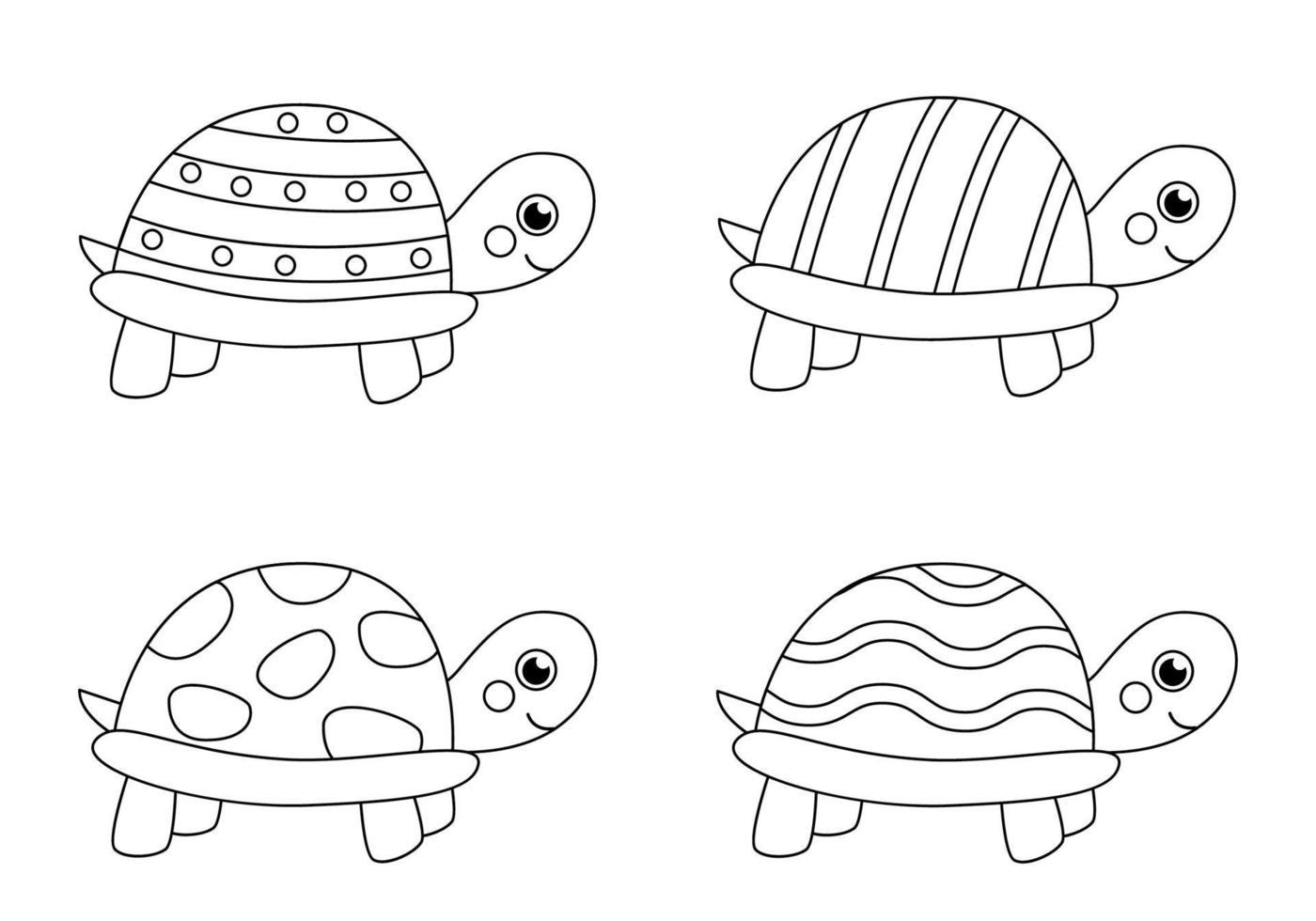 couleur des tortues noires et blanches. coloriage pour les enfants. vecteur