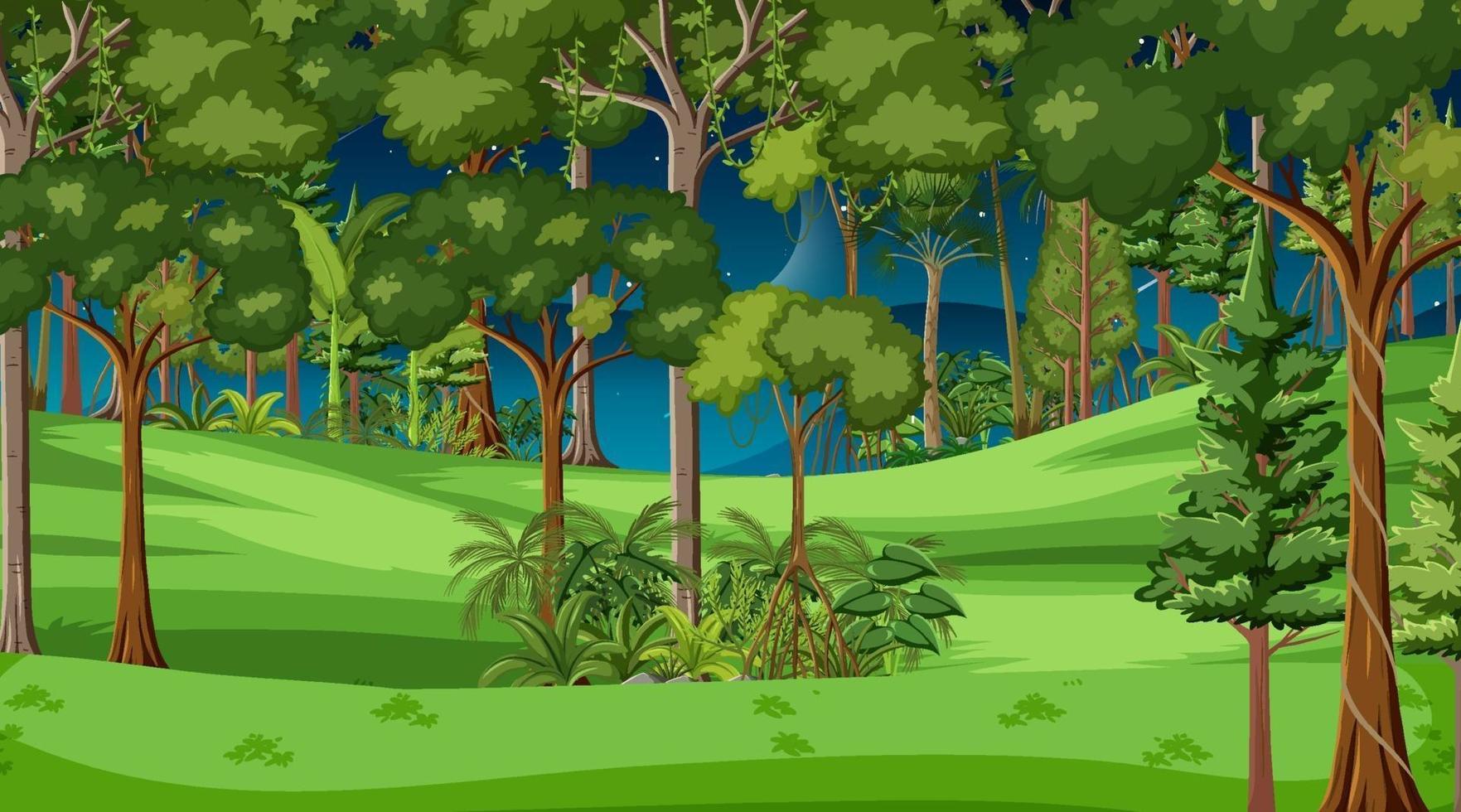 scène de paysage forestier la nuit avec de nombreux arbres vecteur