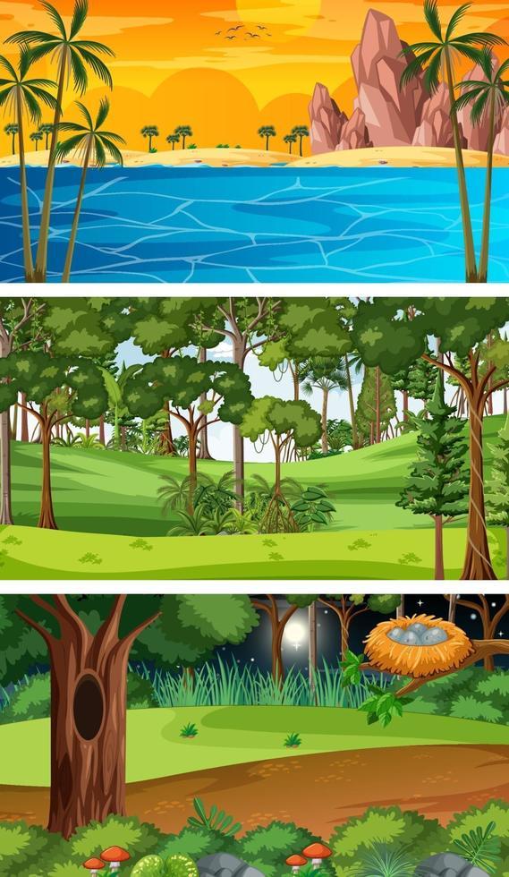 ensemble de différentes scènes horizontales de forêt à des moments différents vecteur