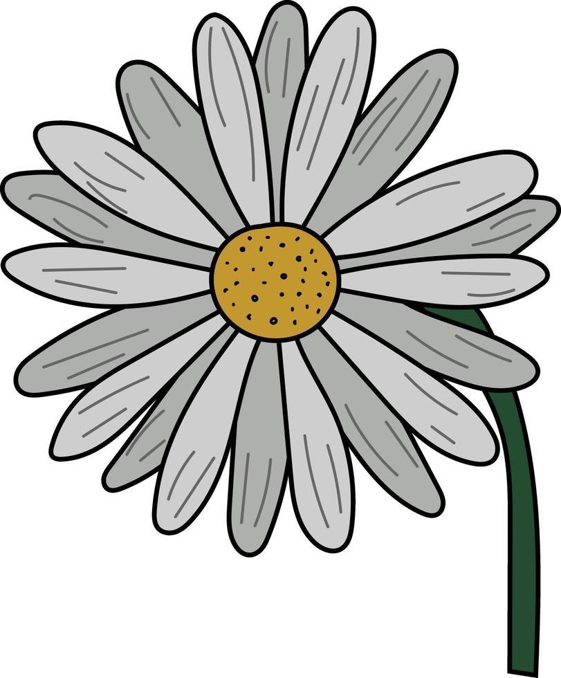 fleur de marguerite plate simple parfaite pour le projet de conception vecteur