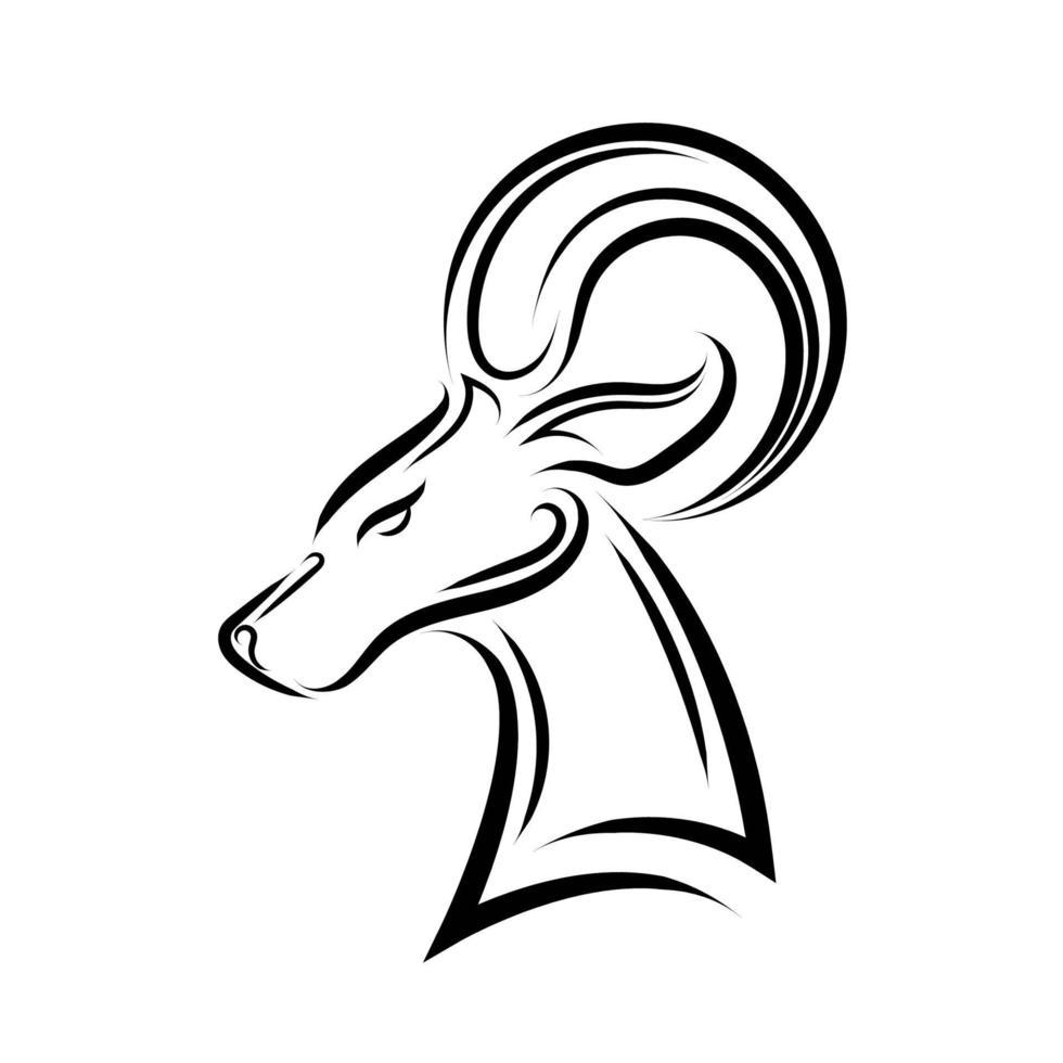 dessin au trait noir et blanc de tête de mouton barbare. vecteur