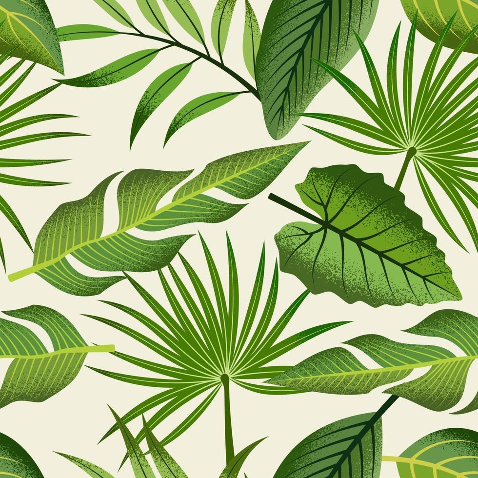 motif tropical sans soudure avec de belles feuilles sur fond clair. vecteur