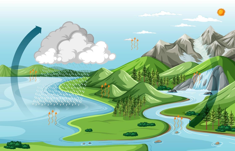 paysage naturel avec le diagramme du cycle de l & # 39; eau vecteur