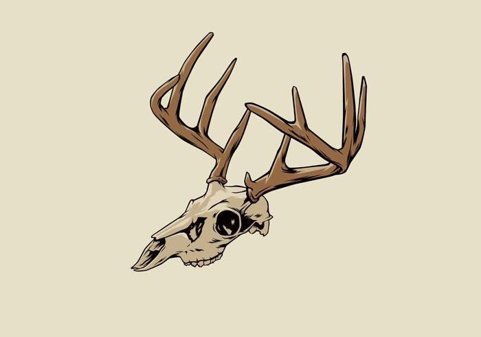 Illustration vectorielle de cerf crâne vecteur