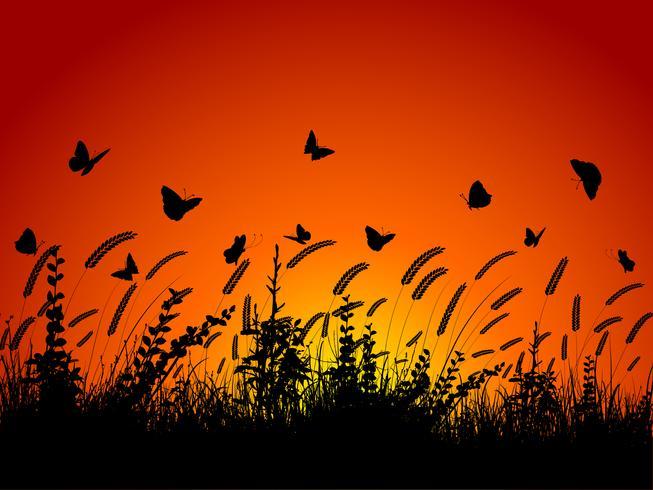 Papillons et feuillages vecteur