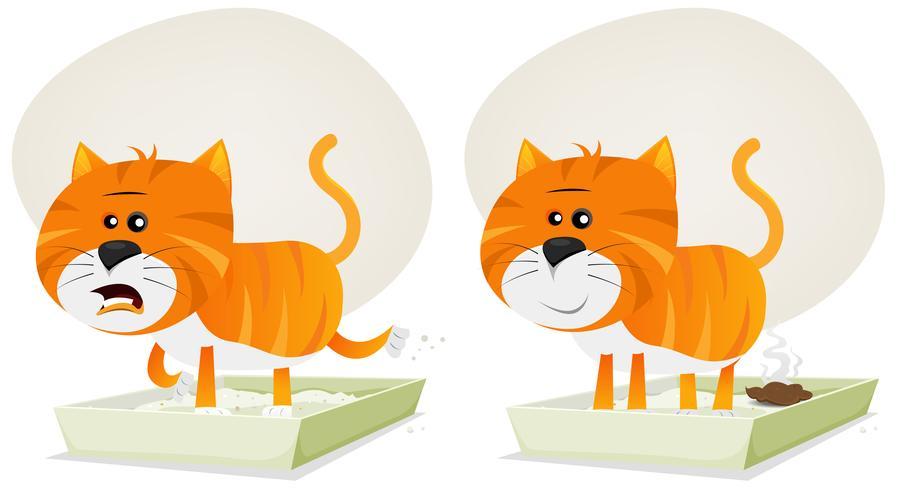 Litière pour chat, avant et après vecteur