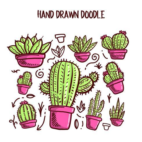 Vecteur de cactus et de succulentes. Illustration de Doodle Set.