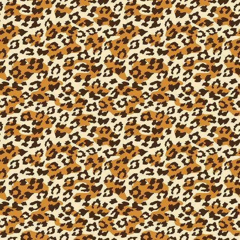 Fond transparent léopard. Illustration vectorielle vecteur