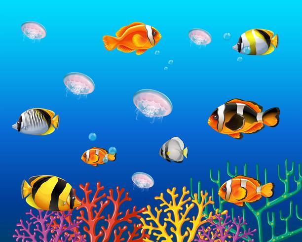 Scène sous-marine avec poissons nageant vecteur