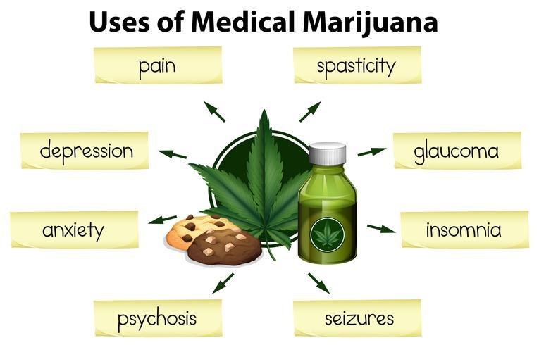 Les utilisations de la marijuana médicale vecteur