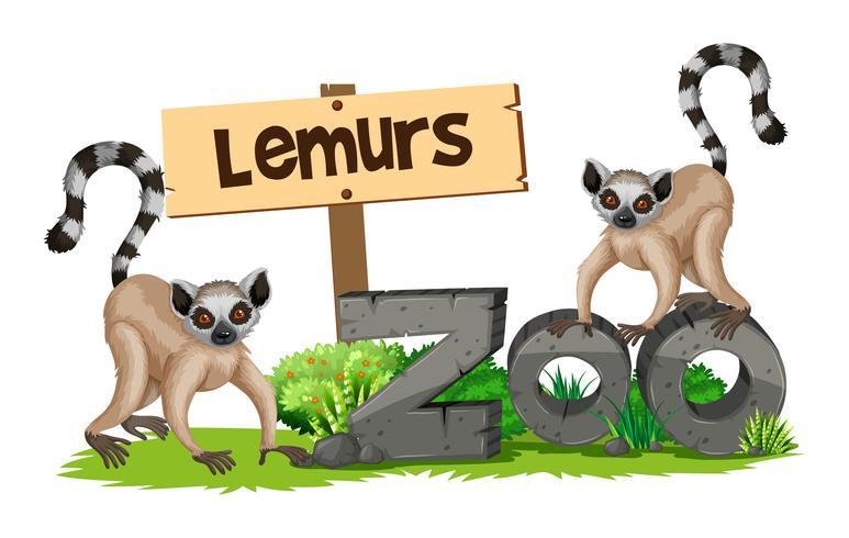 Deux lémuriens au zoo vecteur