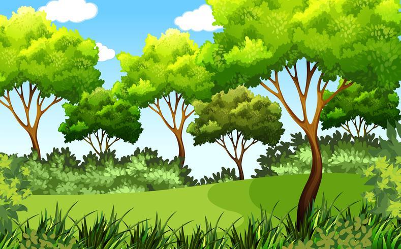 scène de parc en plein air vert vecteur