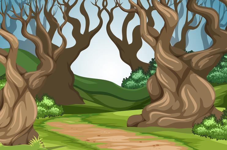 Route dans la forêt vecteur