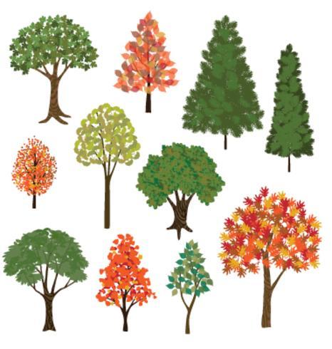 arbres dessinés à la main vecteur
