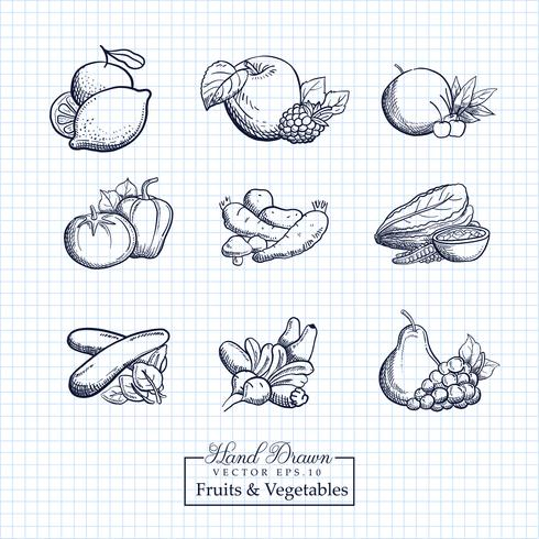 Illustration de fruits et légumes dessinée à la main vecteur