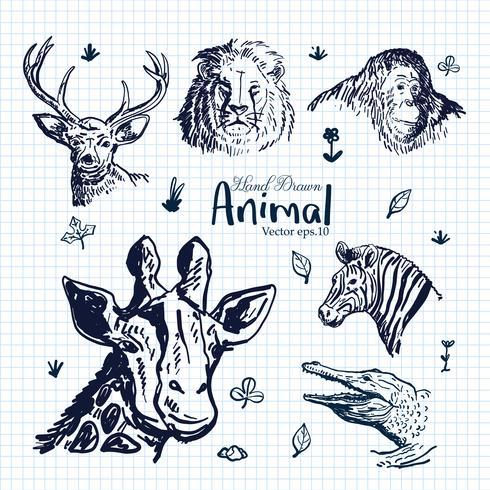 Ensemble d'illustrations animaux dessinés à la main vecteur