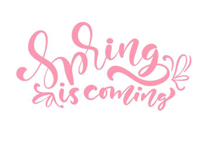 Phrase de lettrage de calligraphie de couleur rose Spring Is Coming vecteur