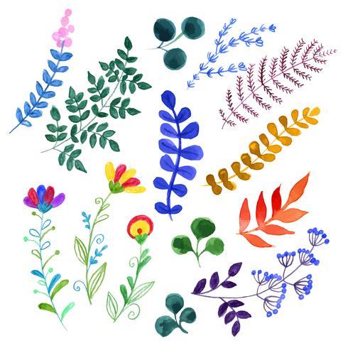 Ensemble de belles fleurs à l'aquarelle vecteur