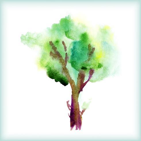 aquarelle arbre vert vecteur