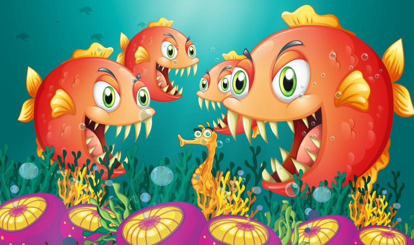 Un hippocampe entouré d'un groupe de piranhas affamés vecteur