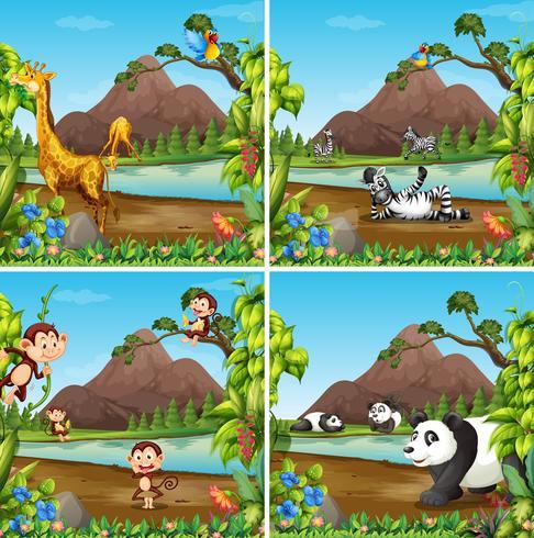 Ensemble d'animaux sauvages dans la scène de la nature vecteur