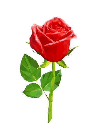 Polygone rouge rose vecteur