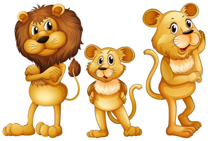 Famille lion debout ensemble vecteur