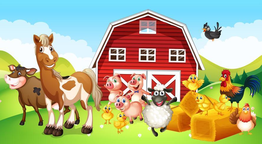 Animaux de la ferme vivant à la ferme vecteur