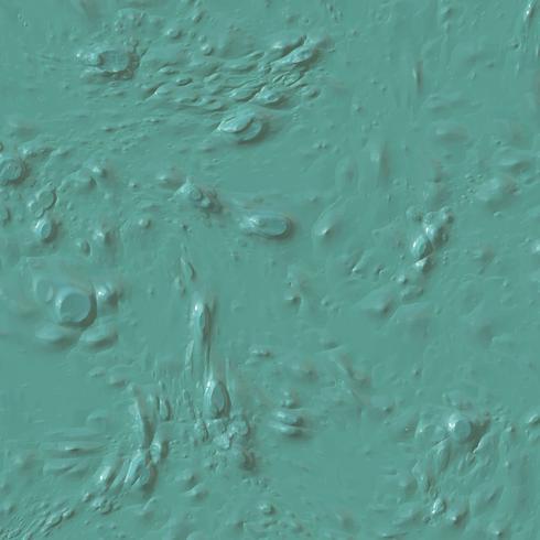 Fond de texture de peinture humide vecteur