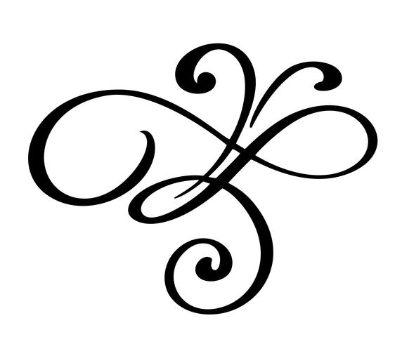 dessinés à la main s'épanouir éléments de calligraphie. Illustration vectorielle vecteur