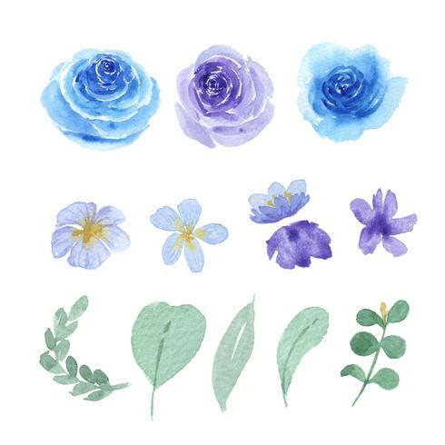 Éléments aquarelles floraux et feuilles définies fleurs luxuriantes peintes à la main. Illustration de rose, pivoine, petites fleurs vintage, aquarelle isolée. Décor design pour carte d'invitation, mariage, affiche, bannière. vecteur