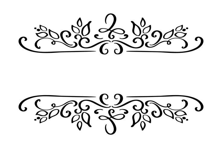 Séparateur de bordures dessinées à la main Élément de designer de calligraphie vecteur